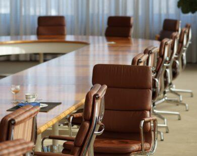 Composição do Conselho de Administração de organizações sociais quanto aos membros natos representantes do Poder Público